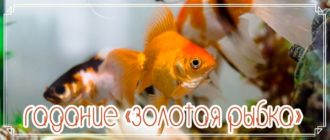 Гадание «Золотая рыбка»