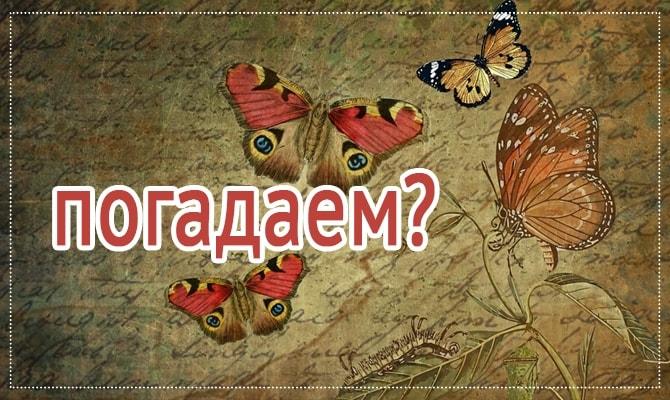 Бабочка - символ жизни