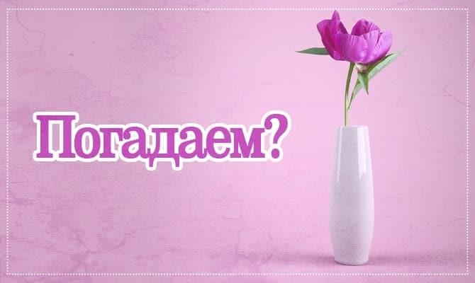 Один цветок - одно желание